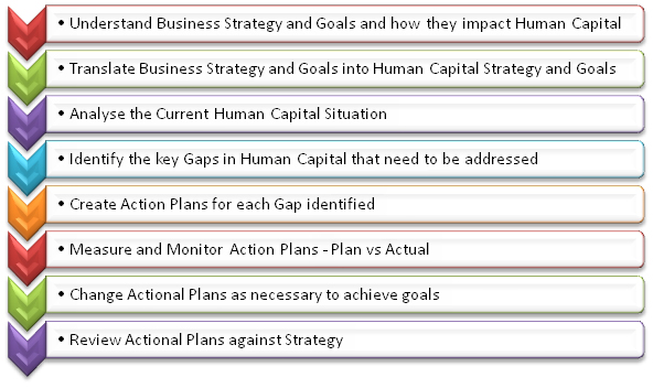 human capital planning process