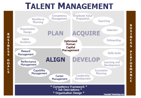 Aligning IT Talent